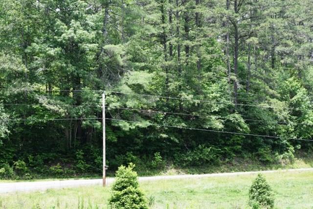 32.64 AC Sneed Branch Rd, MURPHY, NC 28906
