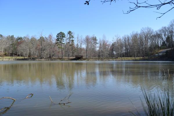 LT 36 Ridge Brook Trail, MORGANTON, GA 30560