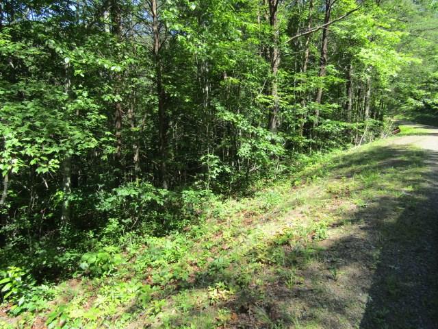 20 Wolf Ridge Lane, MURPHY, NC 28906