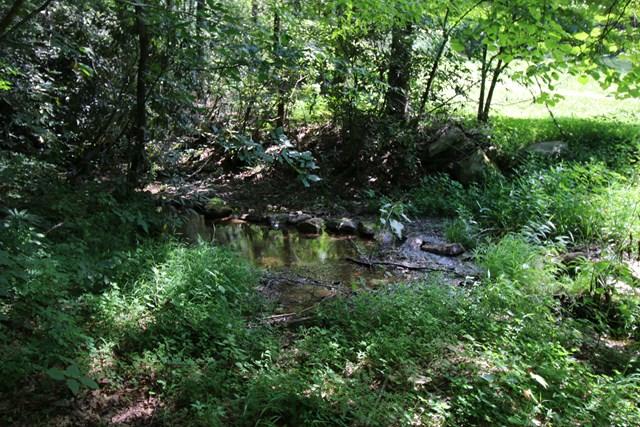709 Sniders Creek, ANDREWS, NC 28901