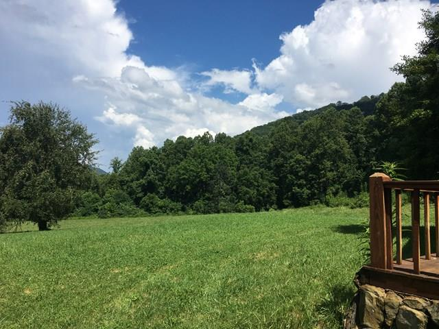 5806 Yellow Creek, ROBBINSVILLE, NC 28771