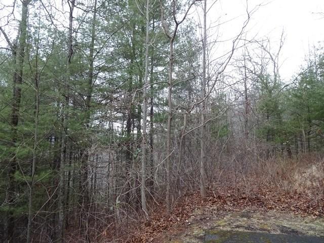 Lot 14 Garnet Ridge Preserve, SYLVA, NC 28779