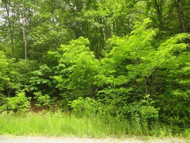 Lot 38 Bear Pen, CULLOWHEE, NC 28717