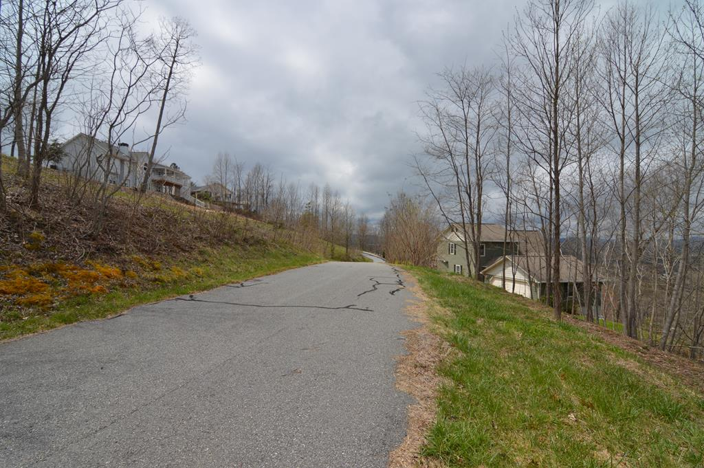LAKE AND MOUNTAIN VIEWS FROM THIS 4.8 ACRE LOT. This lot offers wide paved access, views of the mountains, Lake Chatuge, and the valley below. Municipal water is available! Dan Knob is just across the street from Lake Chatuge and is convenient to Hayesville, Hiawassee, hiking, biking, boating, fishing, swimming and all that the mountain/lakes region has to offer. The adjoining 4.8 acre lot is also available from the same seller. Purchase both lots for a discounted price.