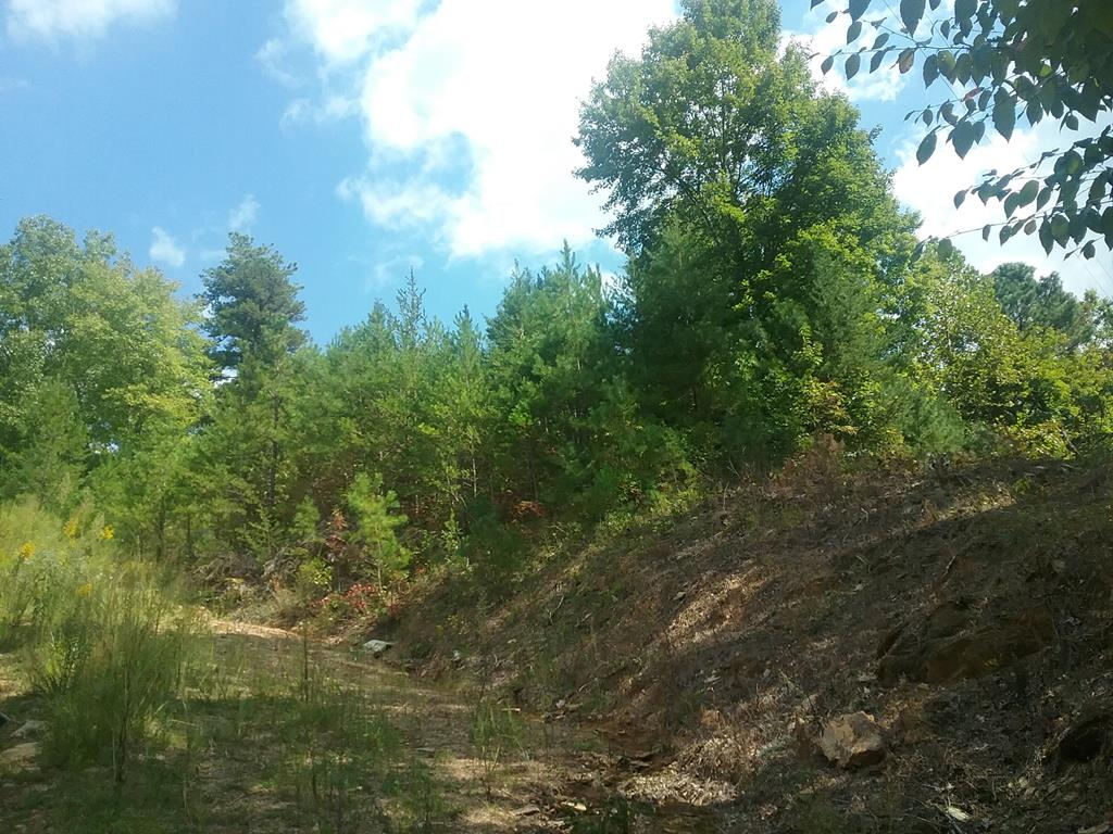 Nice wooded lot in a good neighborhood. Easy building lot for home or modular, restricted against single-wide mobile homes.