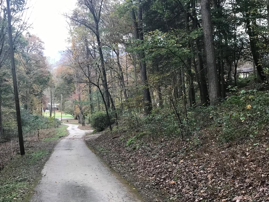 Nice wooded lot just outside of Andrews off Fairview Road.