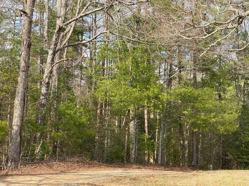 Wooded lot located in the Beaver Dam area of Murphy.  Gravel drive up to lot.  Mature pine trees cover property.