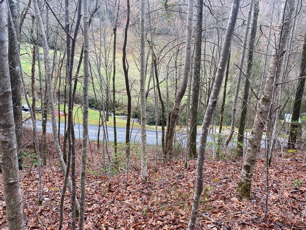 Looking for a gently rolling lot bordered by the USFS to build your mountain home getaway or permanent home so you may have privacy and sit on your front porch and listen to the creek across the road. A road has been cut in, but due to upkeep trees have grown in. An artesian spring is located on the property. This is a must see!!!