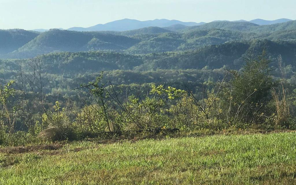 *** All reasonable offers will be considered****** Best long-range mountain views in NC. Have you been waiting for the perfect lot to build your dream mountain home? Here it is! Set in this private gated community with its wide paved road. This lot has long-range mountain views for miles. Come to Vance Mountain and be amazed!