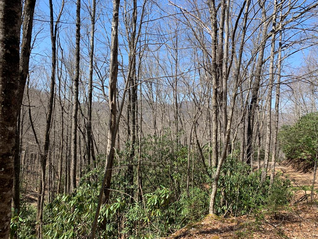 Great location for your mountain getaway.  Nature lovers paradise!  Located close to Lake Nantahala , Nantahala Gorge, Bartram and Appalachian Trails and several area creeks and rivers.  Community Water available.