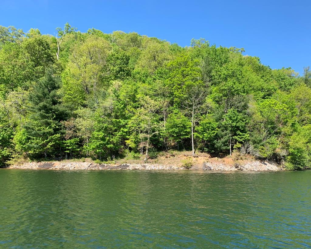 Phenomenal lot in the desirable Nantahala Highlands subdivision.  Overlooks USFS lands.  This lot lays gentler than most available lakefront lots in the area.  Perfect location for a lakefront mountain getaway.  A must see!!!!