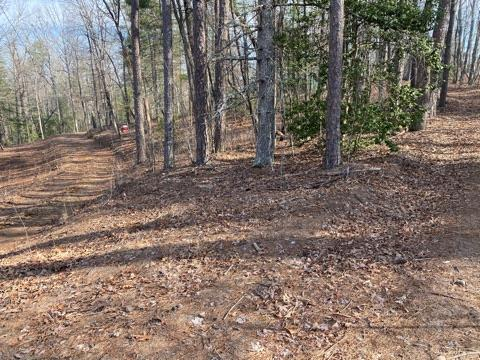 Short distance from downtown Murphy, in rural setting, this 1.60 UNRESTRICED acres.