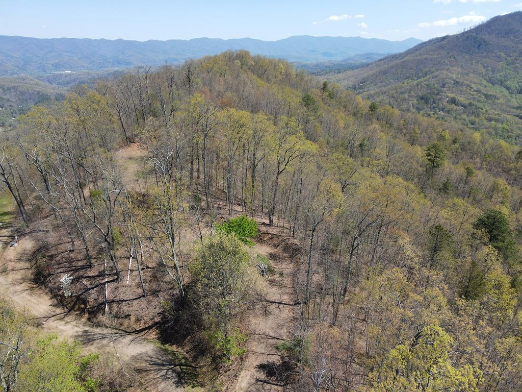 Top of the World Views!  Looking for a great location to build your Dream Home with EXCELLENT VIEWS?  This 1.33 acre lot has community water, underground utilities, cleared drive and homesite, and backs to USFS land, in a Upscale Gated Community convenient to town, shopping, local attractions.