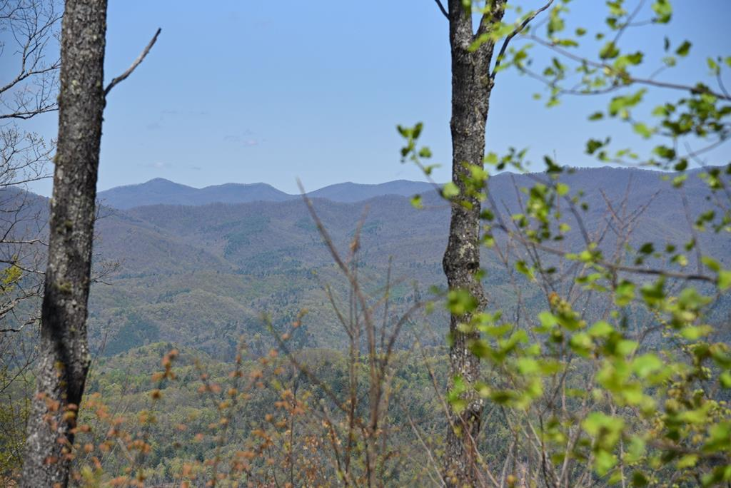Top of the World Views!  Looking for a great location to build your Dream Home with EXCELLENT VIEWS?  This 1.66 acre lot has community water, underground utilities, cleared drive and homesite,  in a Upscale Gated Community convenient to town, shopping, local attractions.