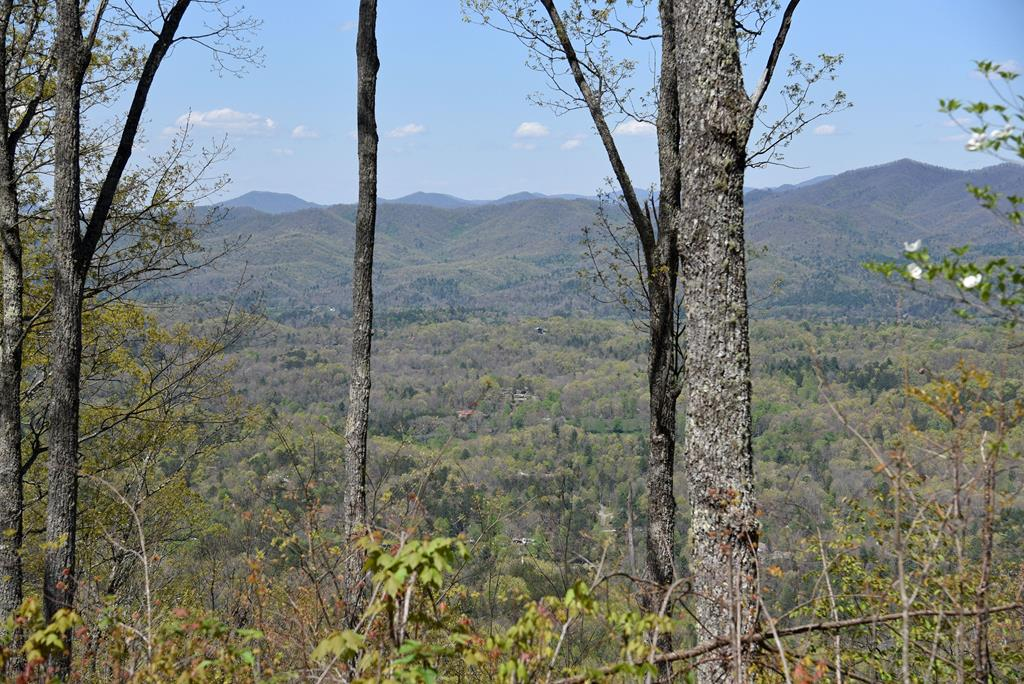 Top of the World Views!  Looking for a great location to build your Dream Home with EXCELLENT VIEWS?  This 3.07 acre lot has community water, underground utilities, cleared drive and homesite,  in a Upscale Gated Community convenient to town, shopping, local attractions.