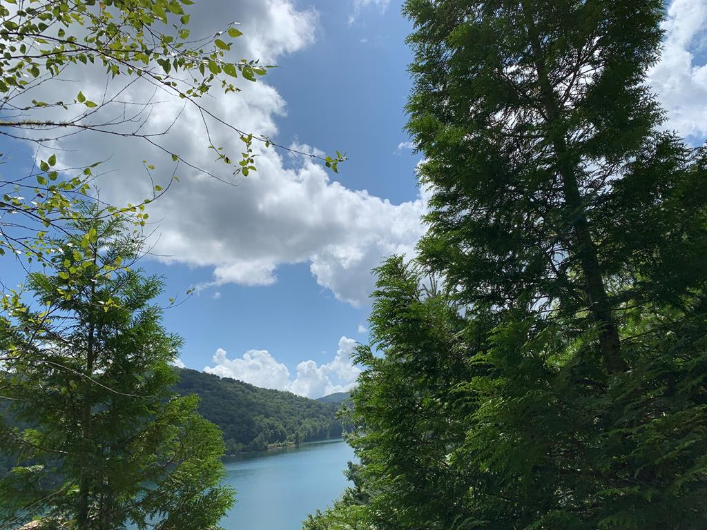 Beautiful lake view lot with driveway and house site in place.  Borders USFS land for added privacy.  Close to Bartram Trail/ Appalachian Trail.  Good location for a mountain getaway.