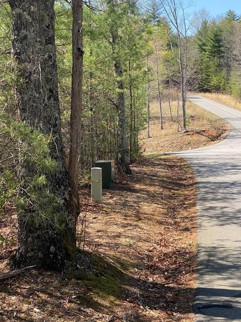 Gentle, wooded building lot to build your mountain retreat...1.11+/- acre in a beautiful and well maintained gated community featuring paved roads, fantastic community clubhouse, electric and shared well available.  Great location, you will be just a short drive to Lake Hiwassee, whitewater rafting, hiking, fishing, downtown Murphy for shopping, dining, entertainment and so much more.....Just 2 hours from Atlanta GA, Chattanooga & Knoxville, TN.