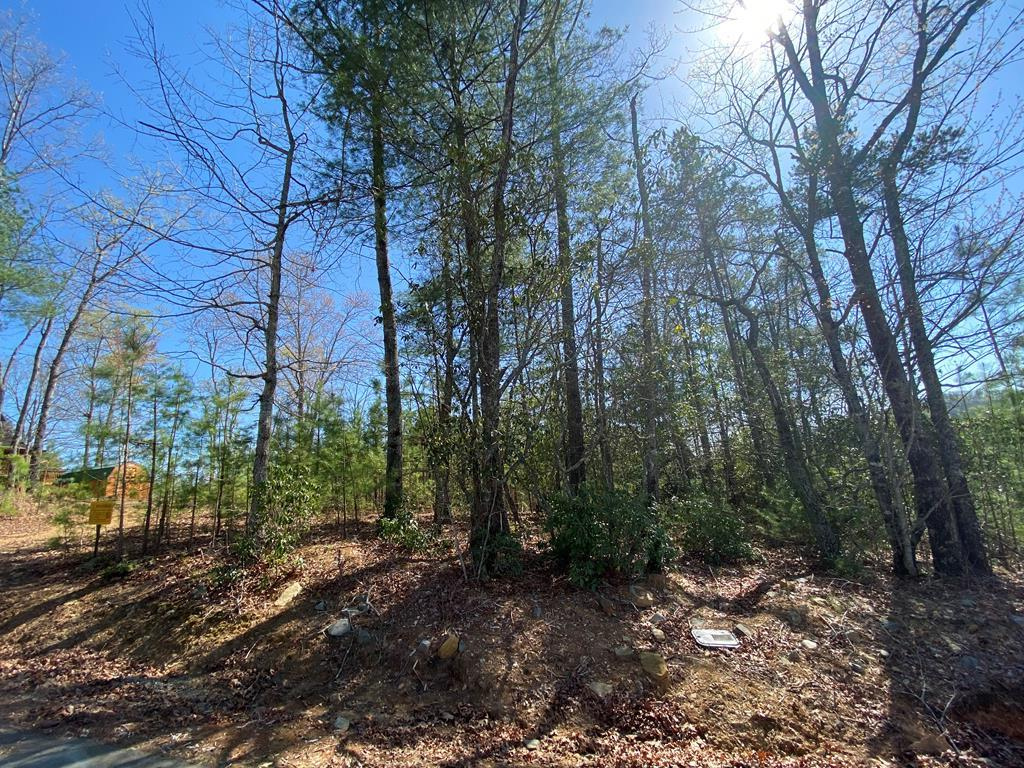 Gentle, wooded building lot to build your mountain retreat...Just under 1 acre in a beautiful and well maintained gated community featuring paved roads, fantastic community clubhouse, electric and shared well available.  Seasonal mountain view. Great location, you will be just a short drive to Lake Hiwassee, whitewater rafting, hiking, fishing, downtown Murphy for shopping, dining, entertainment and so much more.....Just 2 hours from Atlanta GA, Chattanooga & Knoxville, TN.