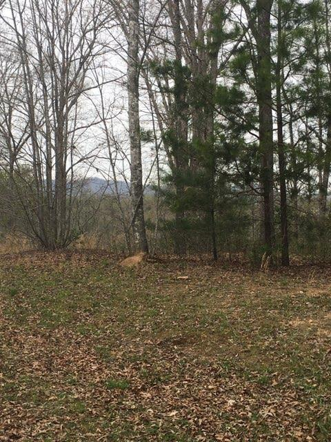 Home site READY FOR YOU in beautiful gated mountain community on the NC/GA line, mountain views from this gentle rolling home site on 1.23+/- acres, underground utilities & paved roads.