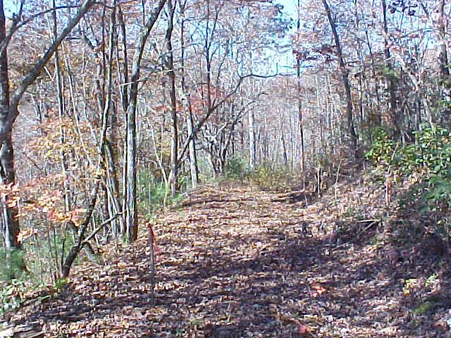 Very gentle 1 acre lot in a little rural subdivision with underground power and community water hookup. Located in western NC near GA and TN. Private area but close to shopping, white-water rafting, boating, fishing, hiking and the natural beauty of our mountains. Ideal for a permanent or part-time home. Easy access; must see.