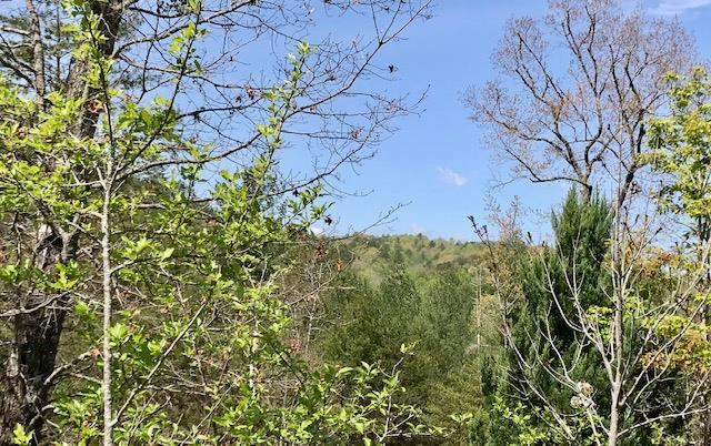 Excellent View Lot is just waiting for the home of your dreams. Located in Highland Creek subdivision with Riverfront access and picnic area to enjoy with the friends and family. Paved roads, community wells and underground utilities. (Lots 77,78 also available)