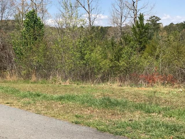Excellent View Lot is just waiting for the home of your dreams. Located in Highland Creek subdivision with Riverfront access and picnic area to enjoy with the friends and family. Paved roads, community wells and underground utilities.