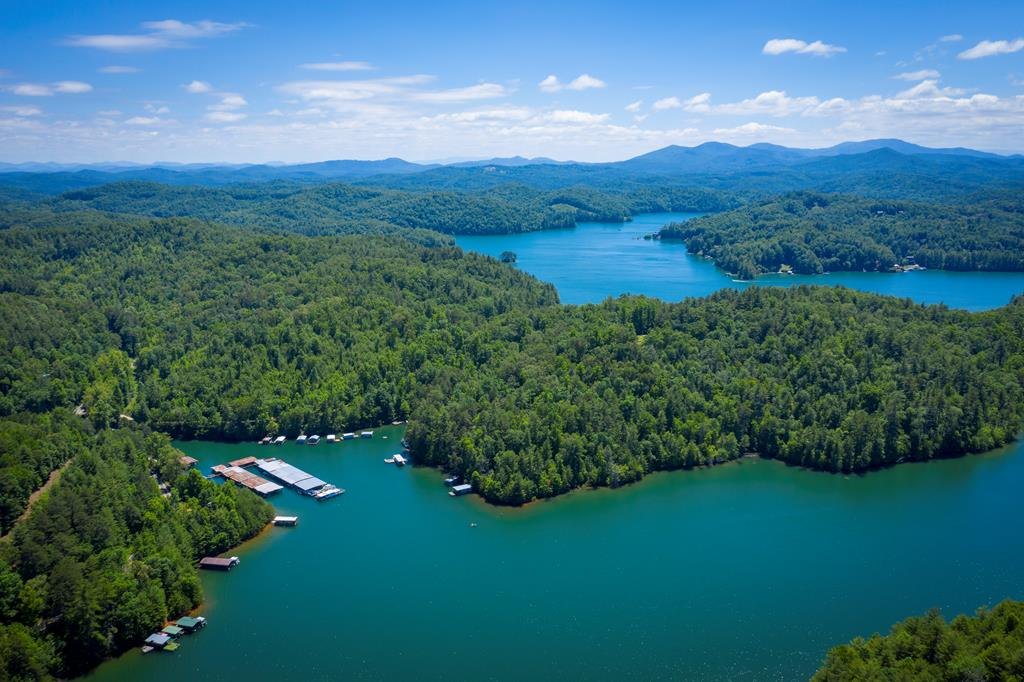 Established Marina on Lake Hiwassee in the Nantahala National Forest! Lake Hiwassee is a 6000+/- acre lake with 180 miles of shoreline and 22 miles long. This lake is a world class fishing destination that has produced many state record fish. Shook's Marina is also home to the second largest WORLD RECORD striped bass ever caught in fresh water. Shook's marina consists of 50 pontoon boats slips, 32 fishing and ski boat slips, 30 + spots for house boats, bait shop and gas pumps. Marina also offers drinks, snacks, bait, gas, and ice. Call Ali Amos at 828-361-2167 with any questions!Virtual Tour is linked,and dropbox link with more pictures is in private remarks.OWNER WILL TRADE FOR REAL ESTATE
