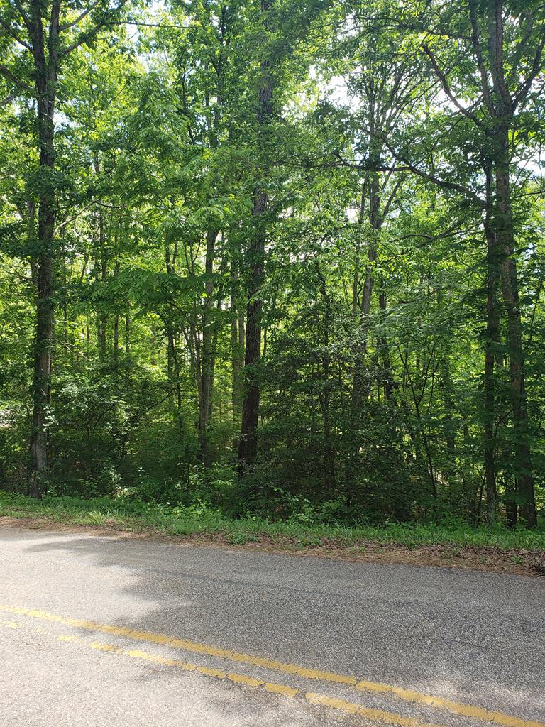 Looking for a great lot to build on?  This 2 acre property might be just the one! With mature hardwoods, electric at the property, access to shared well, and very light restrictions this beautiful lot is ready for your dream home. Come see it today!