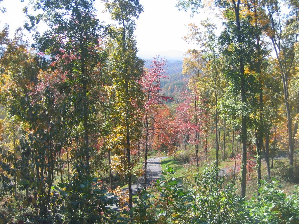 You don't have to travel far from town to have these long views. Come build your dream home on this buildable lot with long range mountain views in the Big Sky Estates!   Community water available and paved roads will lead up to your new home site.  Very close to downtown Murphy, NC and the large boat ramp at Hanging Dog Recreation Area with long paved parking.