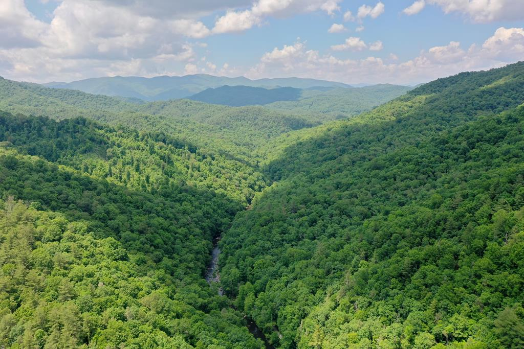 Incredible Offering of 40+/- Acres bordering forest service! One of a kind property just off Old River Road brings privacy unmatched yet close to town.  Literally walking distance to the Nantahala River with incredible fishing, hiking and kayaking! Good roads throughout and all the way to the top of the property. You will not find another property like this with room to build multiple homes or your very own private sanctuary. Property has a small branch and has been surveyed recently! Bring your fishing rod and hiking boots this is a must see for our area. Call Today!