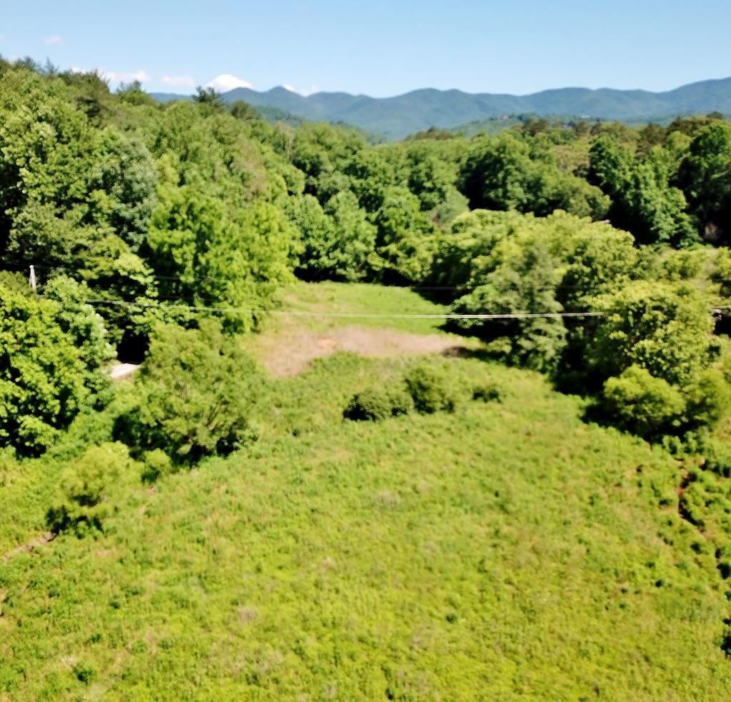 Nice piece of unrestricted land with 2 creeks.  Build your dream cabin or put a mh or camper on it or use pasture for farm animals.  Easy access off Fairview Rd & Castle Ln. &  not far from Andrews & Murphy for convenience to amenities in both mountain towns.