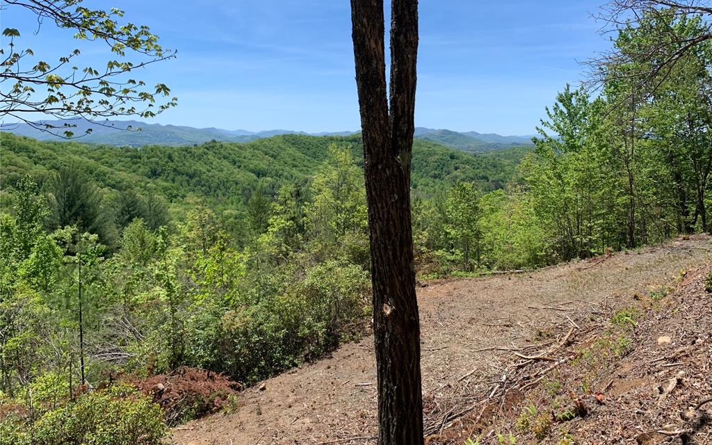 WOW!! Seasonal MOUNTAIN and LONG RANGE VIEWS OF LAKE CHATUGE on this lot! Some of the tree clearing and driveway has already been done for you! With a little more tree clearing the views would be year round. This is an ideal location to build your private getaway in the mountains of North Carolina!