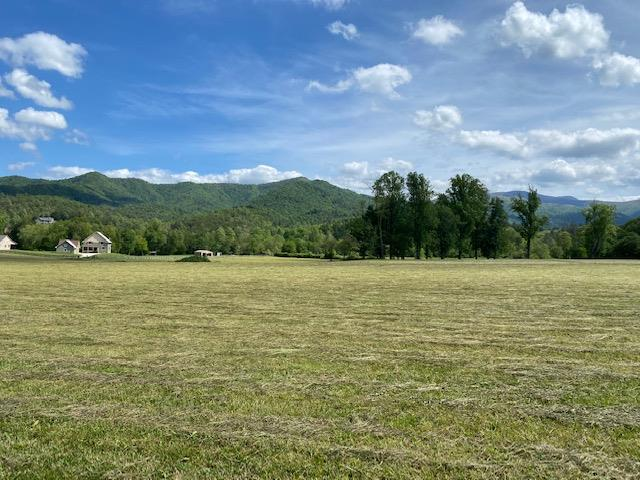 Amazing Tusquittee Valley Views abound from the community of Creekside at Rice Landing.  The community is only 2 miles from the town of Hayesville.  Gentle, easy access right to each lot.  Each tract ranges from 4-7 acres with protective covenants in place to maintain the integrity of the community.  Each lot is very gentle making them all ready for you to build your mountain home here.