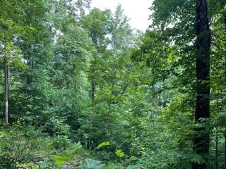 Nice mountain side lot. may catch some lake view from this lot.  Perfect spot for you cabin. Western North Carolina, close to trout waters, hiking trails.