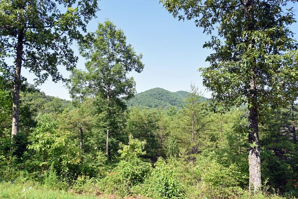 Wooded lot with mountain view located in a beautiful Cabin community of Western North Carolina. Easy access and paved roads. Close and easy drive to town. Well maintained properties all through the community. Common area features covered pavilion and direct access to Hiwassee River.