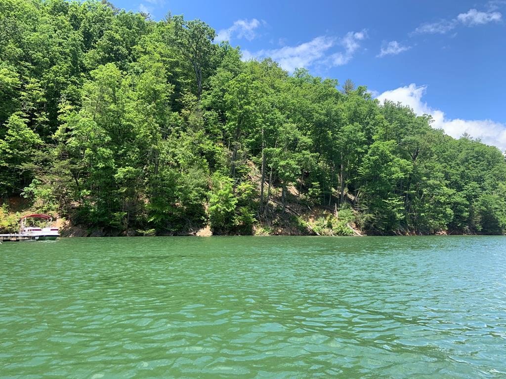 This is a boat access only lot on Fontana Lake in the Panther Cove area. It is close to Prince Boat Dock. It is .84 acres +/- with over 500' of lake frontage. What a glamping site. This is a rare property waiting for the right person to make it incredible. It has unbelievable possibilities. I am ready when you are for a free boat tour. Keep in mind I have 4 other lakefront lots so come see them all.
