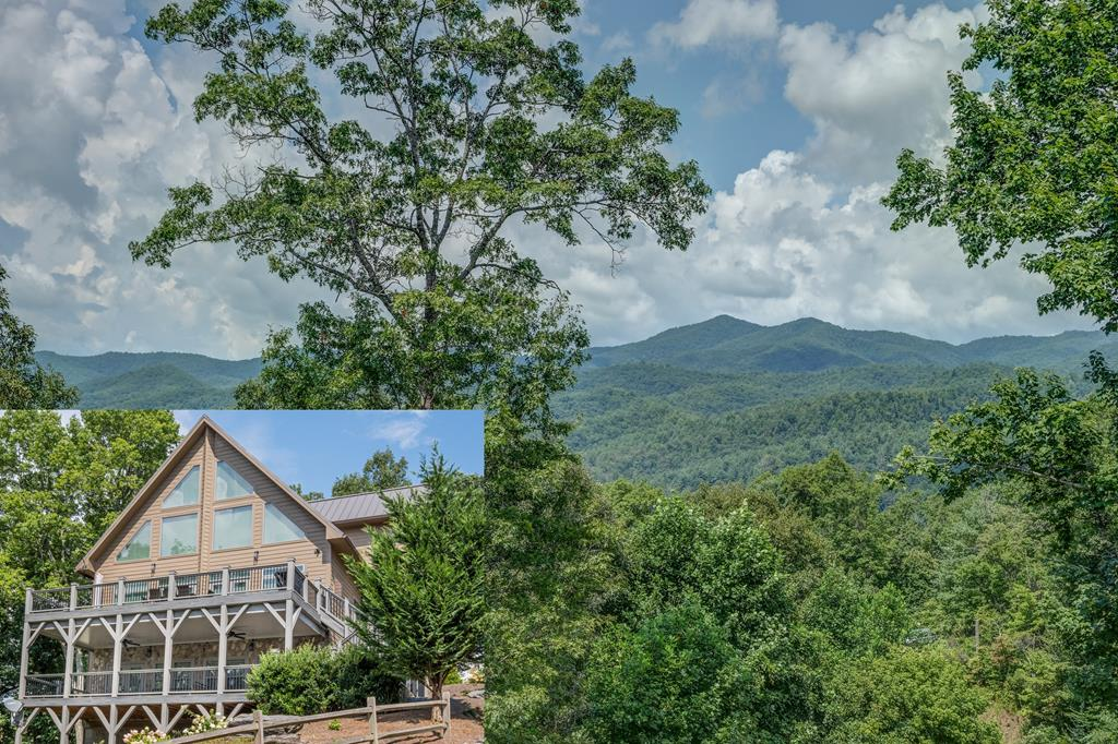 55 Aster Trail, MARBLE, NC 28905