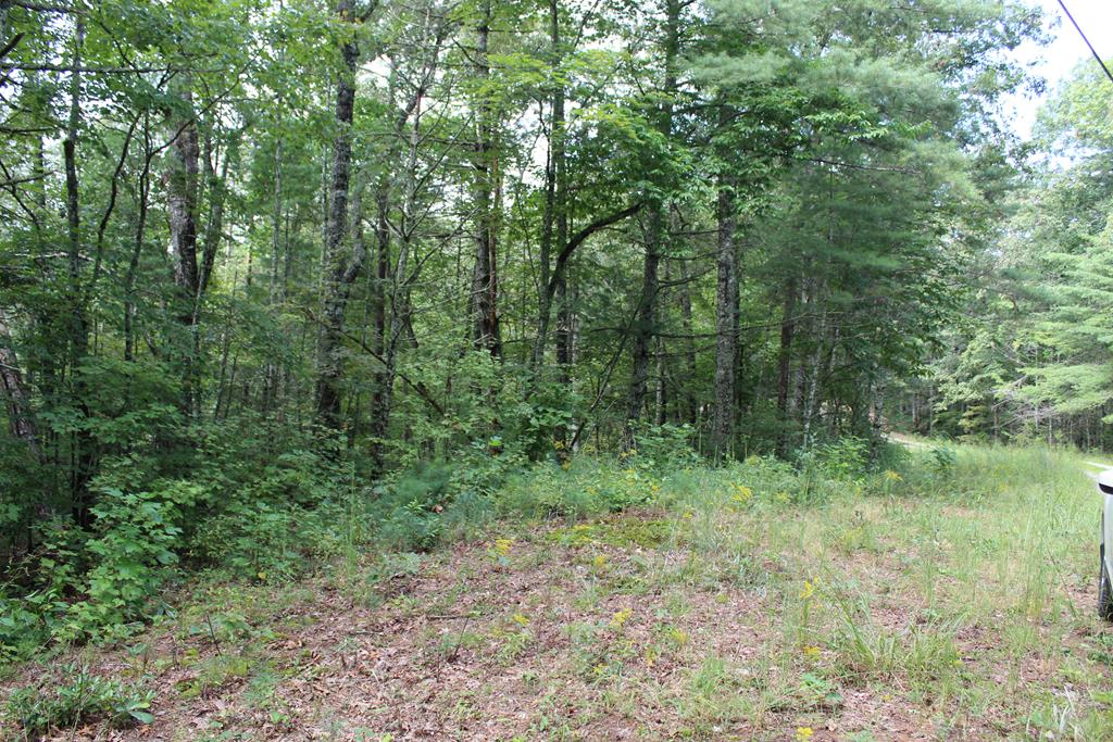OUT IN THE COUNTRY is this lot with access to Camp Creek.  Must build at least 600SQFT home, You can hear the creek from the property. Seasonal views of mountains, near Apalachia Lake. Walk to large waterfall.