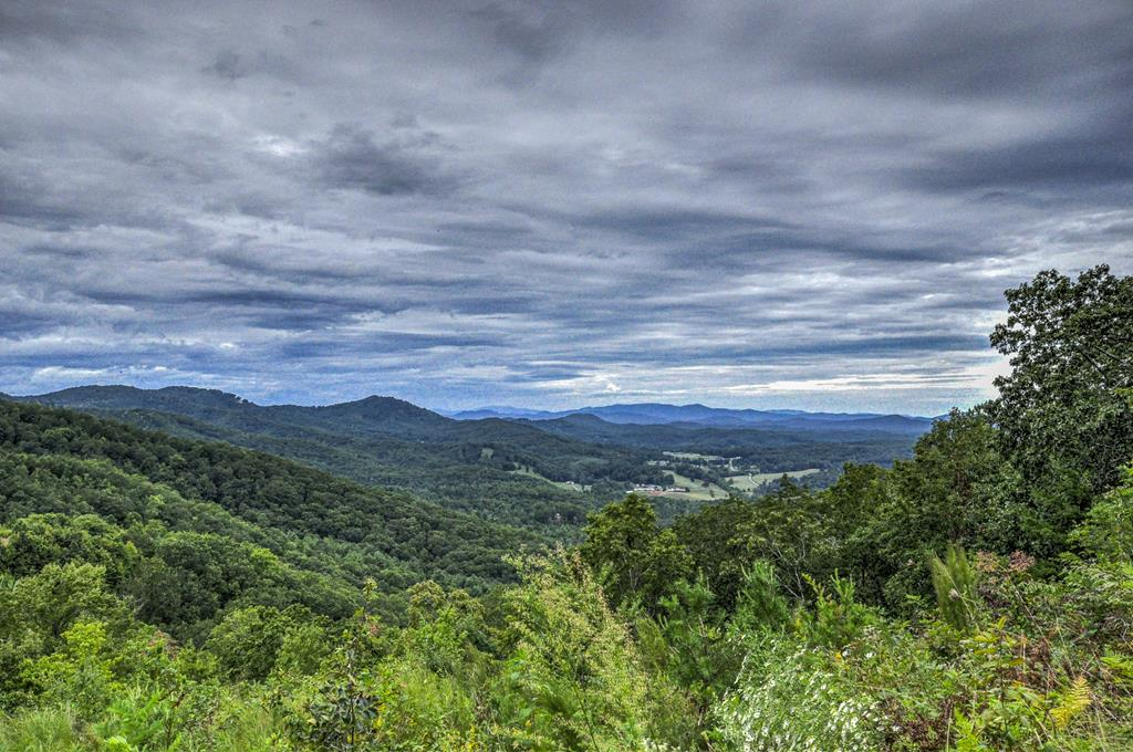 SPECTACULAR long range mountain view lot!!   Year round views of the Brasstown Valley and mountains as far as the eye can see.... Build your mountain dream home in Brasstown Heights a premier gated community with paved roads, community water available and electric nearby.  Wonderful location, just minutes to John C. Campbell Folk School, Erlanger Murphy Medical Center, downtown Murphy for shopping, dining and entertainment.  Adjoining .57 acre lot also available.