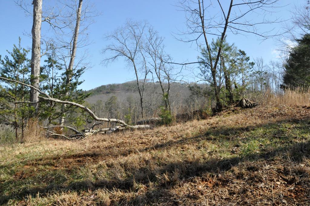 Gorgeous lot to build your home in upscale, gated community located just minutes to Lake Nottely.  1.2+/- acres of gentle land with mountain view.  Underground electric & public water available, just bring your house plans!  Community features paved roads throughout along with 2 waterfront common areas to enjoy being outdoors.  Gorgeous community lodge with views of Lake Nottley also available for property owners for special events or large family gatherings (in walking distance).  Convenient location, just a short drive to downtown Blairsville for shopping, dining & entertainment not to mention all the local attractions & events!  The perfect place to start your life in the mountains!!!