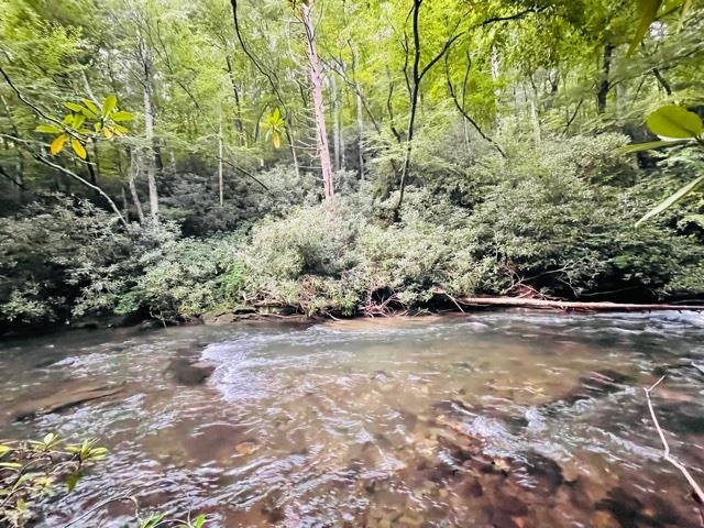 REDUCED! Snowbird creek front lot! This lot has the creek running through it, you have both sides of the creek to use and landscape as you like. Easy access located off Big Snowbird Road in private community. Build your dream getaway on a renowned trout stream!
