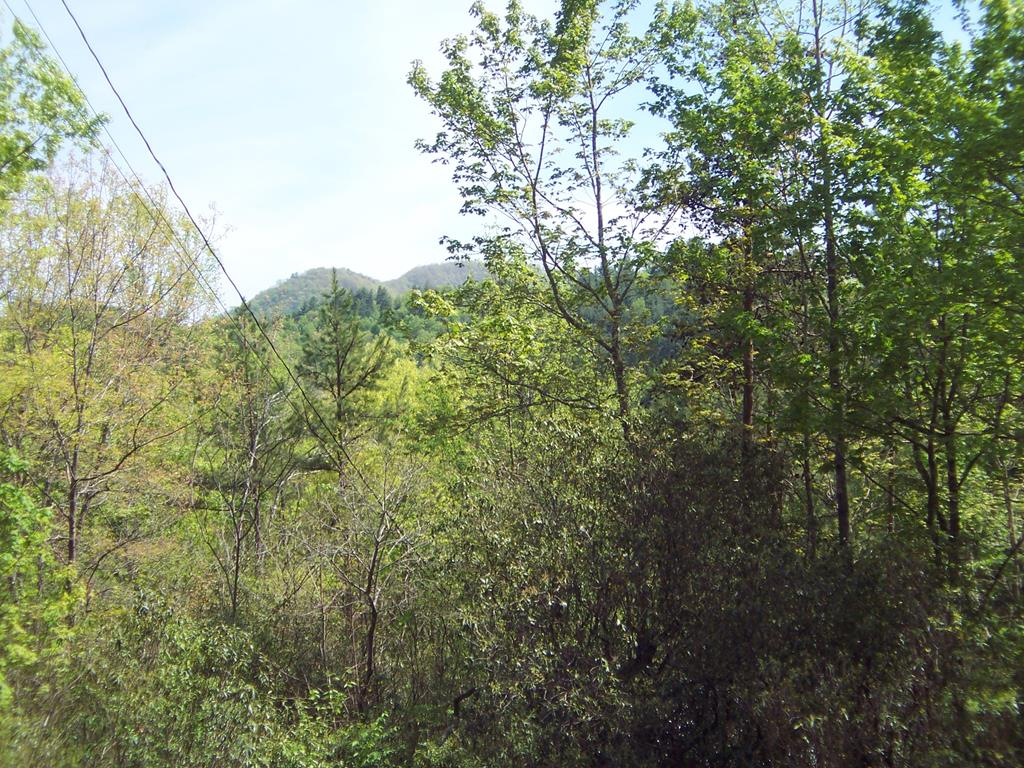 There are at least two excellent level home sites on this 6.63 acre lot. This land provides a quiet and heavily wooded location yet it is within ten minutes of the local hospital & 15 minutes to downtown Murphy. Outstanding privacy with plenty of wildlife.  Looking for more land? Then take a look at Lot 5, 2.71 acres, adjacent to this lot which is also available, see MLS ######.  Purchase both lots for a contiguous 9.34 acres.