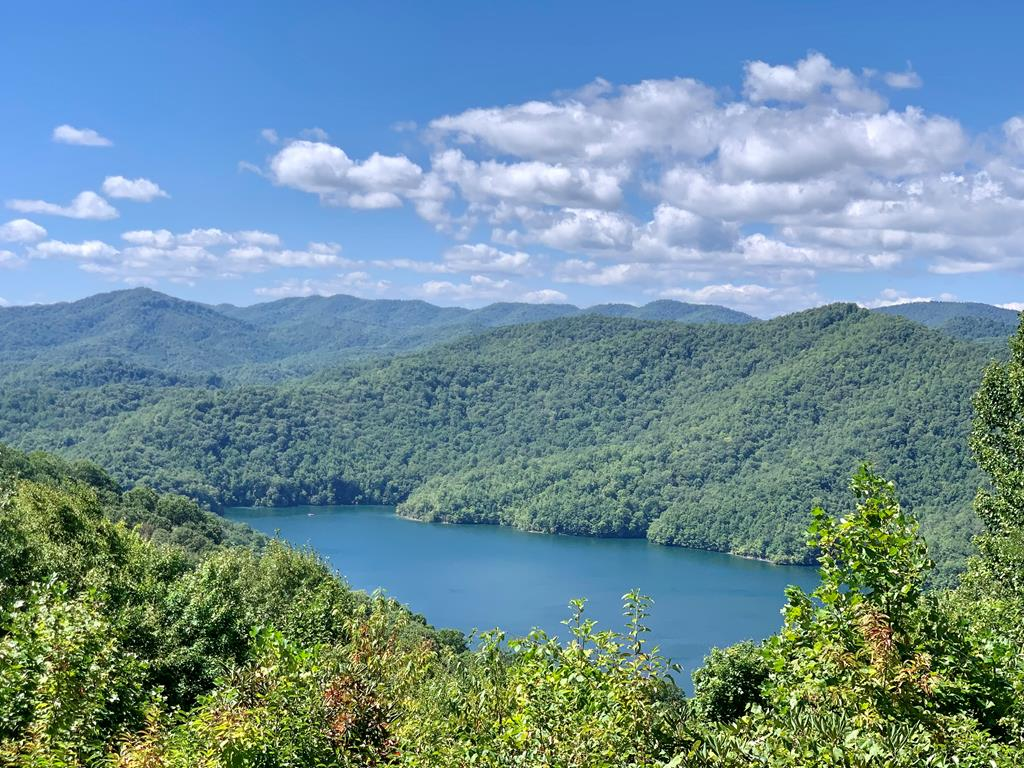 3 LAKE VIEW LOTS!!!!!!  This view will not disappoint!  Borders USFS lands.  Do not miss this rare opportunity to purchase these developers choice lots!  Storage building on lot and previous home place ready to build on.  Community water and septic in place.