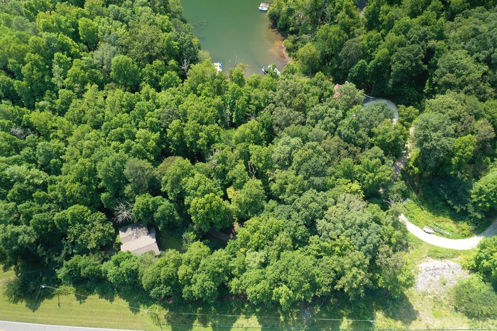 A peaceful and private 0.63+/- acre waterfront parcel with pristine Lake Santeetlah frontage where natures artwork is on full display. Gaze across the open waters to enjoy a panoramic view of the Snowbird Mountains and Nantahala National Forest. This amazing property, where eagles and red hawks soar, also boasts mature hardwoods which adds an extra element of beauty and shade. Easy walk to the waters edge from the building envelope which has captivating views of a large quiet cove with deep water.