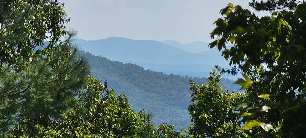 STUNNING LONG RANGE MOUNTAIN VIEWS from this beautiful piece of the appalachian mountains! Portions of this 2.79 acres of gorgeous land are cleared enough to easily walk the property, and explore potential home sites. 3 bedroom septic system installed, and community water available for hookup making this parcel ready for you to come build your dream mountain home! Enjoy the leisure of the many walking trails, waterfalls, and community picnic areas of Wilderness Creek Falls! You don't want to miss this opportunity to make this yours!