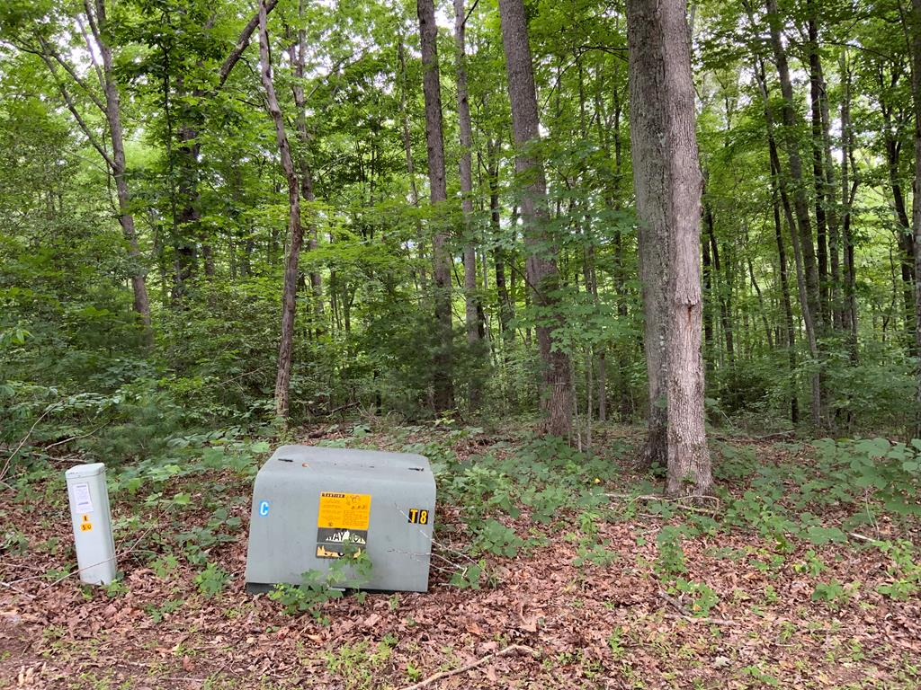 Beautiful 1.47 acre lot, EXCEPTIONAL VIEWS with minimal clearing overlooking Young Harris Valley. Minimum restrictions!!!! PUBLIC WATER is available. Hi speed internet. Close to towns of Hiawassee and Blairsville in Ga. and also Murphy and Haysville across the border in NC.