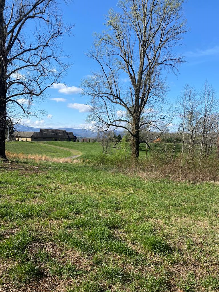 """ENJOY ALL THE BENEFITS OF A GATED COMMUNITY WITHOUT THE HASSLE OF DEALING WITH THE GATE. THIS GREAT BUILDING LOT IS PART OF """"THE ARBOR"""" BUT IS LOCATED OUTSIDE OF THE GATED SECTION. MOUNTAIN VIEWS, LAYS WELL FOR ANY TYPE OF HOME. ADJOINS THE COMMUNITY COMMON AREA AND FRONTS THE POND."""