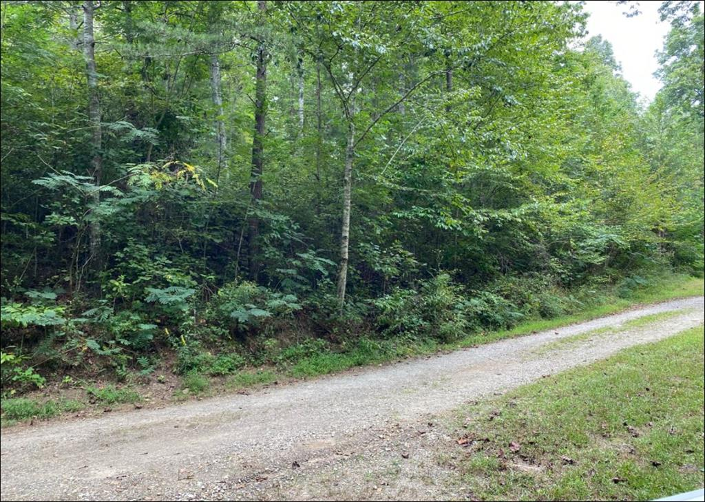 This gentle laying 1.40 acre lot has water hook up available  and allows your RV while you build or for permanent location..