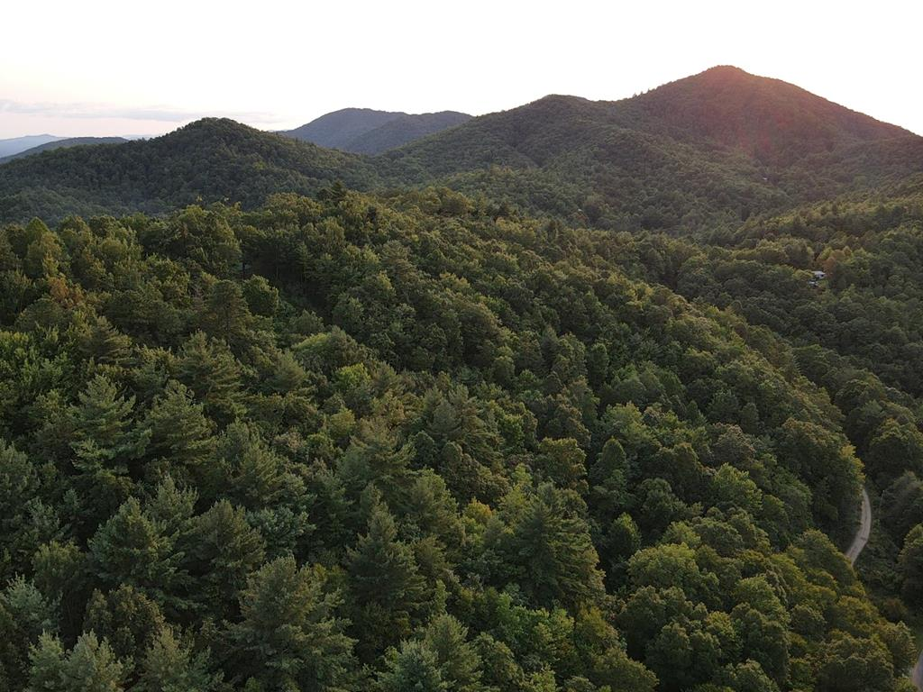 UNRESTRICTED LAND IN THE BEAUTIFUL MOUNTAINS OF WNC.  ACCESS OFF BEAVER DAM RD.  GORGEOUS VIEWS!  LAND IS UNCLEARED.  1.88+/- ACRES.