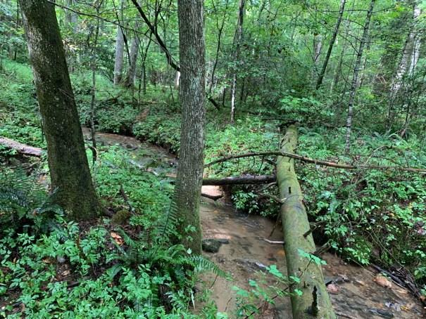 The perfect property to build your dream home or getaway cabin. This mildly restricted subdivision has underground power, and a common area with a creek, pavilion, picnic tables, and BBQ. This property offers gentle to sloping land down to a nice creek that borders the property. Plenty of room to spread out, and enjoy nature and all the area activities. Near whitewater rafting, tubing, hiking, the casino, Tail of the Dragon, and Blue Ridge, GA. Come home to a slower pace of life.